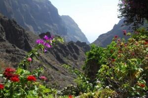 Anaga, Wandern auf Teneriffa